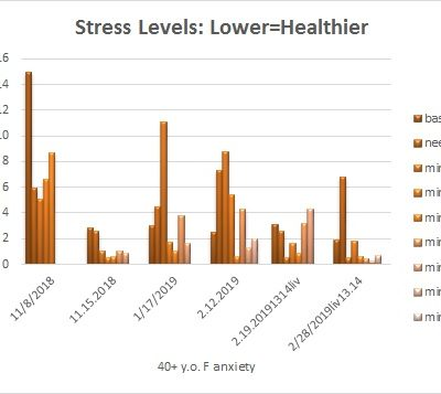 HRV Stress Levels in Acupuncture Clinic: Na.Am edition