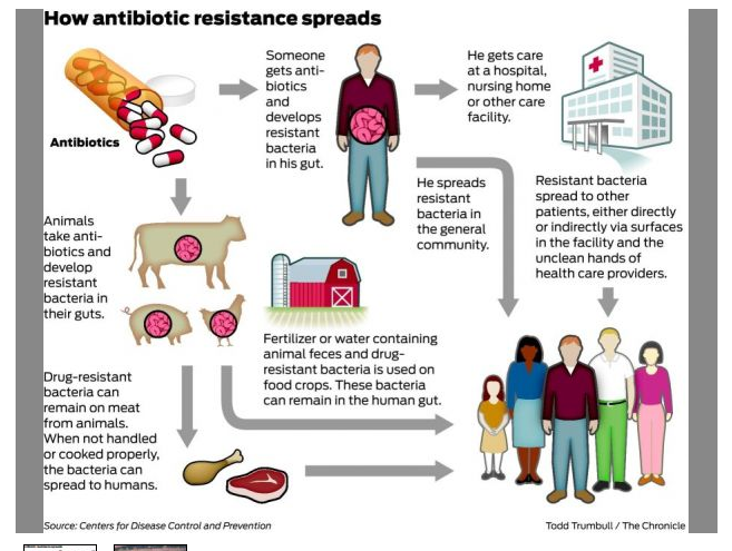 the rise of antibiotic resistant diseases essay Essay on antibiotic resistance - introduction this article is about the determination of antibiotic resistance that relies on the fitness effects of resistance elements in the absence of antibiotics.