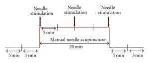 schematic for Litscher Study